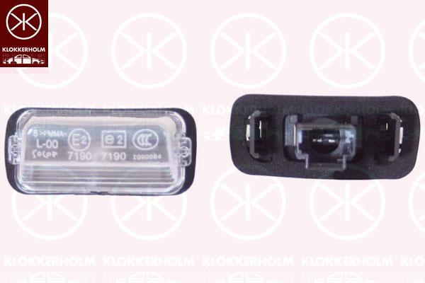 Oświetlenie Tablicy Rejestracyjnej Peugeot 307 307 Sw 3h 20